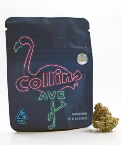 Collins Ave cookies strains
